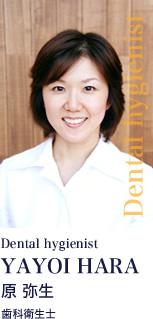 Dental hygienist YAYOI HARA 原 弥生 歯科衛生士